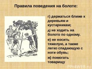 Правила поведения на болоте: г) держаться ближе к деревьям и кустарникам; д) не
