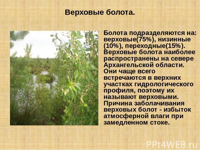Верховые болота. Болота подразделяются на: верховые(75%), низинные (10%), переходные(15%). Верховые болота наиболее распространены на севере Архангельской области. Они чаще всего встречаются в верхних участках гидрологического профиля, поэтому их на…