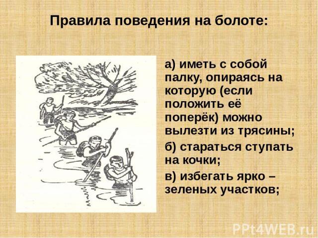 Правила поведения на болоте: а) иметь с собой палку, опираясь на которую (если положить её поперёк) можно вылезти из трясины; б) стараться ступать на кочки; в) избегать ярко – зеленых участков;