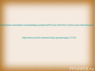 http://www.tv100.ru/news/Tajny-podzemelja-17773/ http://www.newstube.ru/media/ta