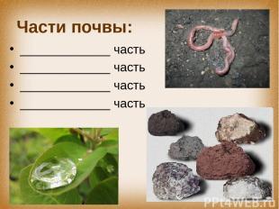 Части почвы: _____________ часть _____________ часть _____________ часть _______