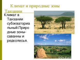 Климат и природные зоны Танзании Климат в Танзании субэкваториальный.Природные з