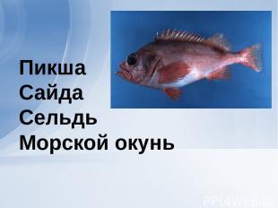 Пикша Сайда Сельдь Морской окунь