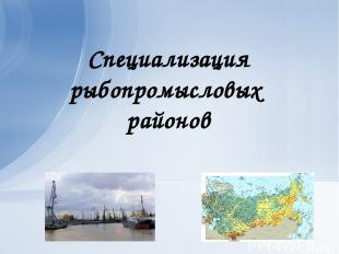 Специализация рыбопромысловых районов