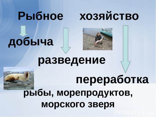 рыбы, морепродуктов, морского зверя добыча разведение переработка хозяйство Рыбное