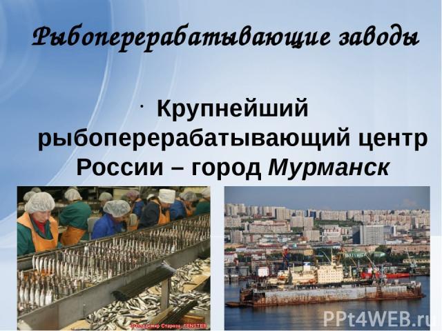 Рыбоперерабатывающие заводы Крупнейший рыбоперерабатывающий центр России – город Мурманск