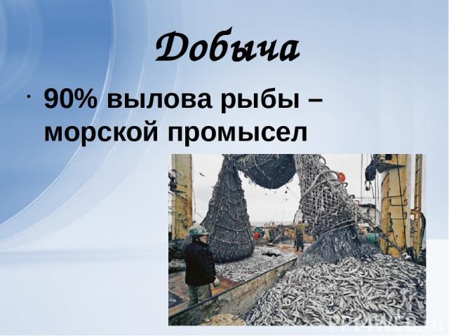 Добыча 90% вылова рыбы – морской промысел