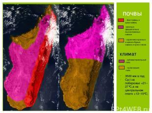 почвы - Желтозёмы и краснозёмы -красные феррапитные высокотравных саванн - корич