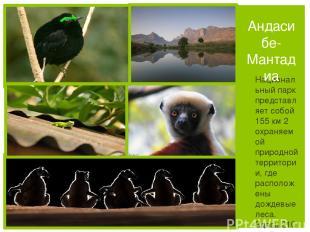 Национальный парк представляет собой 155 км 2 охраняемой природной территории, г