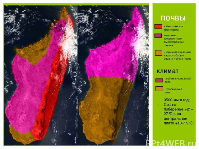 почвы - Желтозёмы и краснозёмы -красные феррапитные высокотравных саванн - коричнево-красные и красно-бурые саванн и сухих лесов климат - субэкваториальный пояс - тропический пояс 3500 мм в год; Ср.t на побережье +21– 27°C,а на центральном плато +13–19°C;