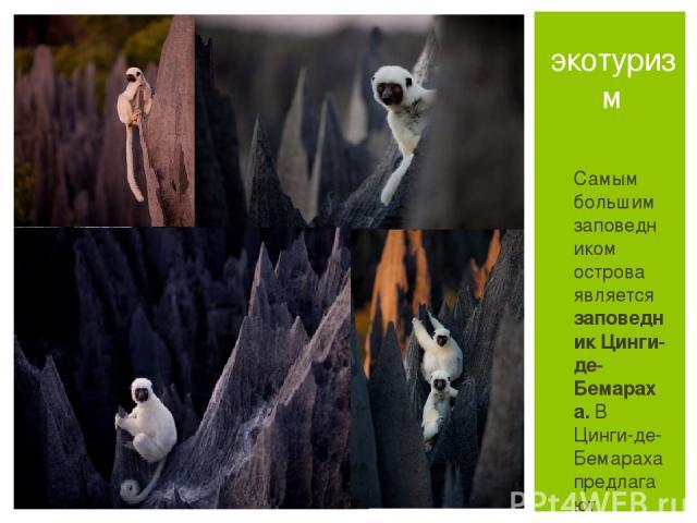 Самым большим заповедником острова являетсязаповедник Цинги-де-Бемараха. В Цинги-де-Бемараха предлагают экскурсии на каноэ по реке Манамбулу, во время которых можно увидеть разнообразные ландшафты, водопады и гроты. экотуризм