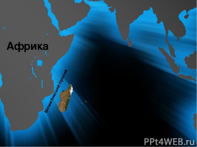 Мозамбикский пролив Индийский Океан Африка