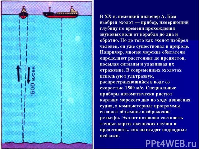 В XX в. немецкий инженер А. Бам изобрел эхолот — прибор, измеряющий глубину по времени прохождения звуковых волн от корабля до дна и обратно. Но до того как эхолот изобрел человек, он уже существовал в природе. Например, многие морские обитатели опр…