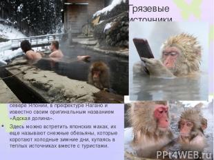 Грязевые источники Дзигокудани – знаменитые на весь мир теплые грязевые источник