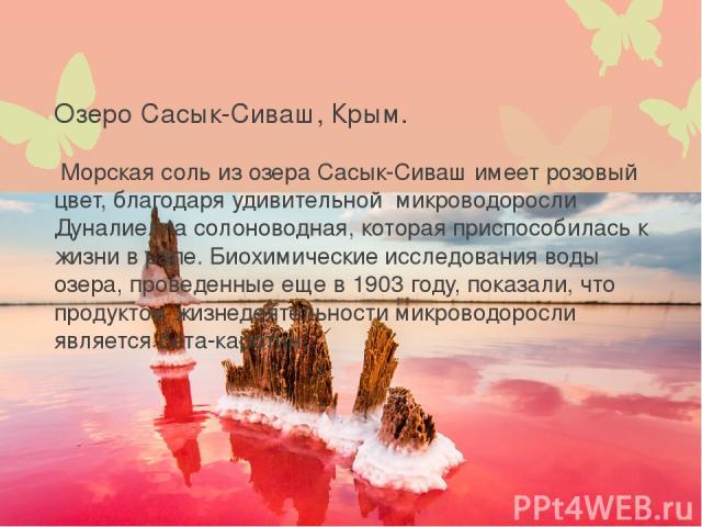Озеро Сасык-Сиваш, Крым. Морская соль из озера Сасык-Сиваш имеет розовый цвет, благодаря удивительной микроводоросли Дуналиелла солоноводная, которая приспособилась к жизни в рапе. Биохимические исследования воды озера, проведенные еще в 1903 году, …