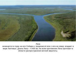 Лена начинается в горах на юге Сибири и, прорезав её всю с юга на север, впадает