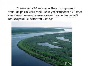 Примерно в 90 км выше Якутска характер течения резко меняется. Лена успокаиваетс