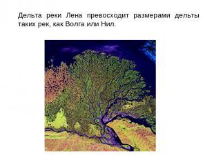 Дельта реки Лена превосходит размерами дельты таких рек, как Волга или Нил.