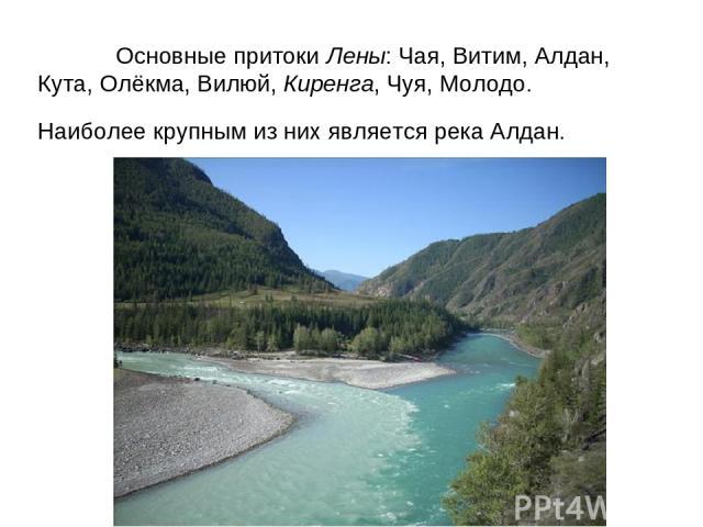 Основные притоки Лены: Чая, Витим, Алдан, Кута, Олёкма, Вилюй, Киренга, Чуя, Молодо. Наиболее крупным из них является река Алдан.