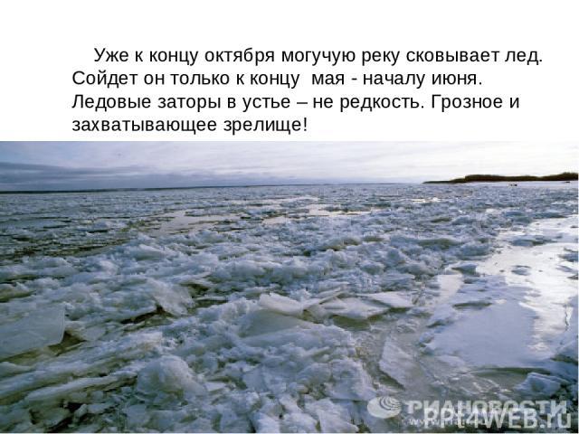 Уже к концу октября могучую реку сковывает лед. Сойдет он только к концу мая - началу июня. Ледовые заторы в устье – не редкость. Грозное и захватывающее зрелище!