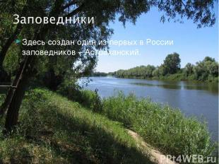 Здесь создан один из первых в России заповедников – Астраханский.