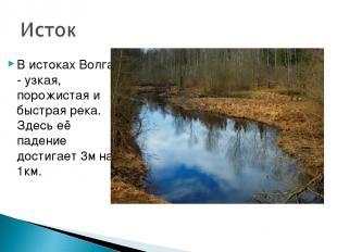 В истоках Волга - узкая, порожистая и быстрая река. Здесь её падение достигает 3