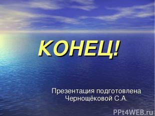 КОНЕЦ! Презентация подготовлена Чернощёковой С.А.