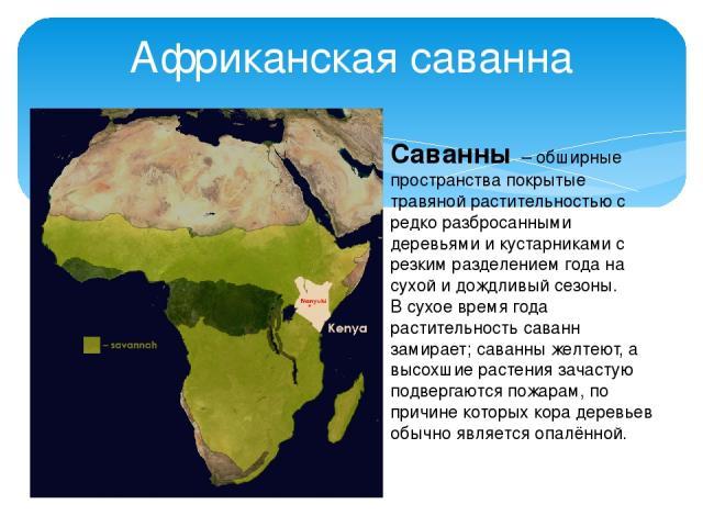 Африканская саванна Саванны – обширные пространства покрытые травяной растительностью с редко разбросанными деревьями и кустарниками с резким разделением года на сухой и дождливый сезоны. В сухое время года растительность саванн замирает; саванны же…