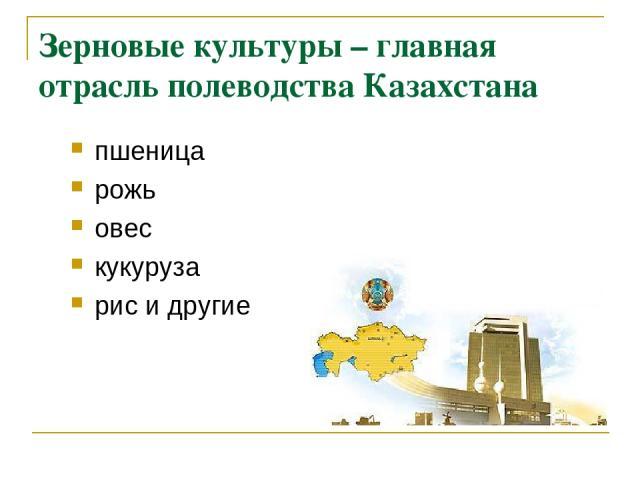 Зерновые культуры – главная отрасль полеводства Казахстана пшеница рожь овес кукуруза рис и другие