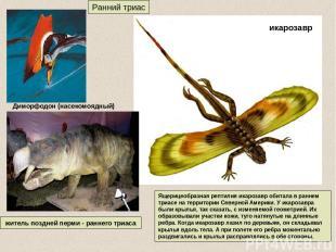 Ранний триас житель поздней перми - раннего триаса Ящерицеобразная рептилия икар
