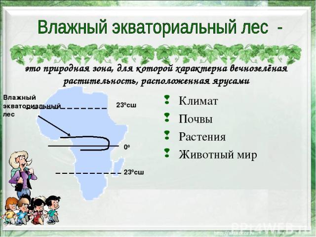 это природная зона, для которой характерна вечнозелёная растительность, расположенная ярусами Климат Почвы Растения Животный мир 230сш 00 230сш Влажный экваториальный лес
