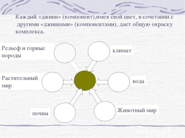 Каждый «джинн» (компонент),имея свой цвет, в сочетании с другими «джиннами» (компонентами), дает общую окраску комплекса.
