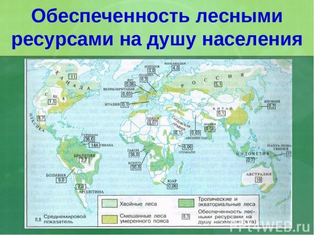 Обеспеченность лесными ресурсами на душу населения