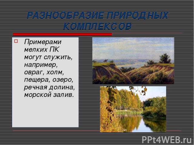 РАЗНООБРАЗИЕ ПРИРОДНЫХ КОМПЛЕКСОВ Примерами мелких ПК могут служить, например, овраг, холм, пещера, озеро, речная долина, морской залив.