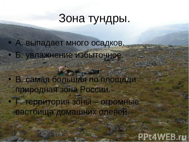 Зона тундры. А. выпадает много осадков. Б. увлажнение избыточное. В. самая большая по площади природная зона России. Г. территория зоны – огромные пастбища домашних оленей.
