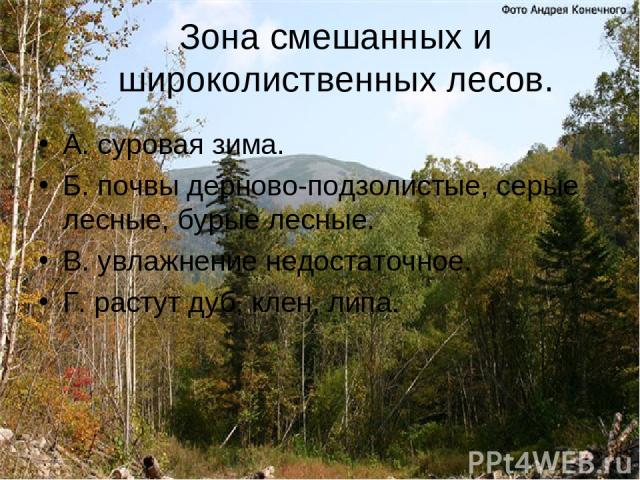 Зона смешанных и широколиственных лесов. А. суровая зима. Б. почвы дерново-подзолистые, серые лесные, бурые лесные. В. увлажнение недостаточное. Г. растут дуб, клен, липа.