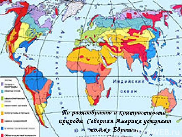По разнообразию и контрастности природы Северная Америка уступает только Евразии,