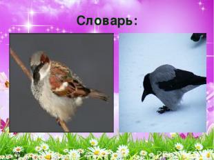 * Словарь: ВОРОБЕЙ ВОРОНА