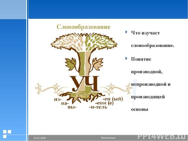 Что изучает словообразование. Понятие производной, непроизводной и производящей основы Стр. * 20.01.2006 Презентация