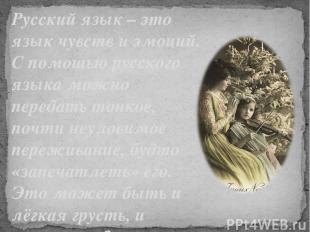 Русский язык – это язык чувств и эмоций. С помощью русского языка можно передать