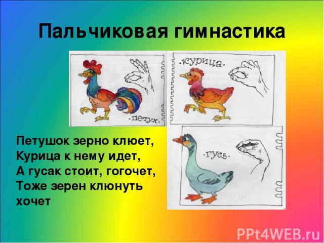 Пальчиковая гимнастика Петушок зерно клюет, Курица к нему идет, А гусак стоит, гогочет, Тоже зерен клюнуть хочет