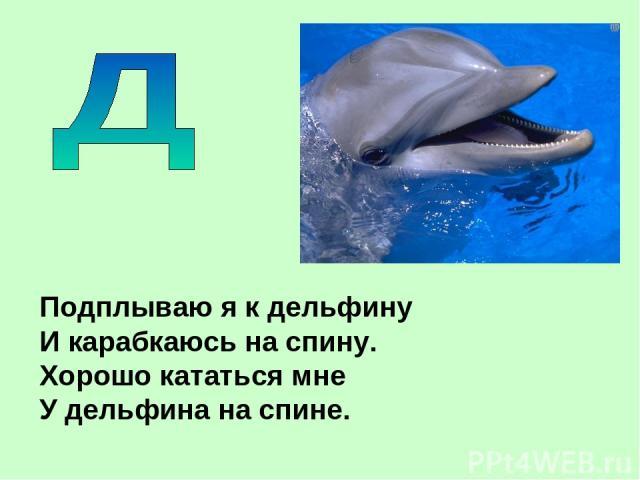 Подплываю я к дельфину И карабкаюсь на спину. Хорошо кататься мне У дельфина на спине.