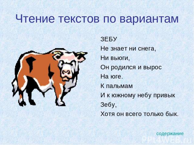 Чтение текстов по вариантам ЗЕБУ Не знает ни снега, Ни вьюги, Он родился и вырос На юге. К пальмам И к южному небу привык Зебу, Хотя он всего только бык. содержание