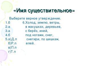 «Имя существительное» Выберите верное утверждение. 1.б 6.Холод, землю, ветры, 2.