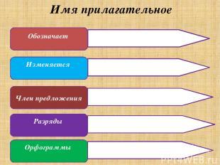 Имя прилагательное Обозначает Изменяется Член предложения Разряды Орфограммы При
