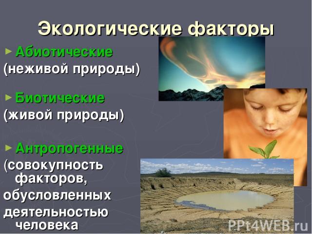 Экологические факторы Абиотические (неживой природы) Биотические (живой природы) Антропогенные (совокупность факторов, обусловленных деятельностью человека
