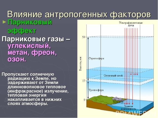 Влияние антропогенных факторов Парниковый эффект Парниковые газы – углекислый, метан, фреон, озон. Пропускают солнечную радиацию к Земле, но задерживают от Земли длинноволновое тепловое (инфракрасное) излучение, тепловая энергия накапливается в нижн…