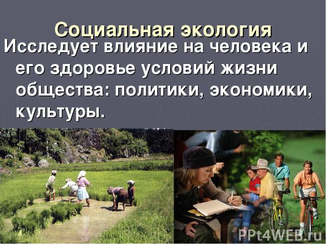 Социальная экология Исследует влияние на человека и его здоровье условий жизни общества: политики, экономики, культуры.
