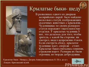 Крылатые быки- шеду В развалинах одного из дворцов ассирийских царей было найден