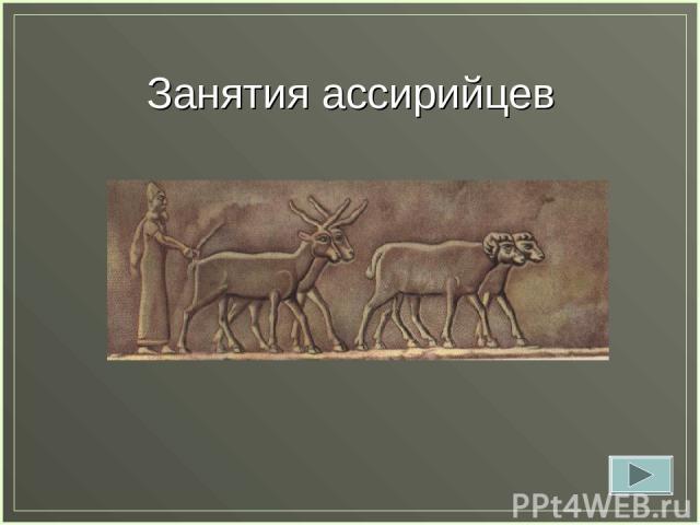Занятия ассирийцев